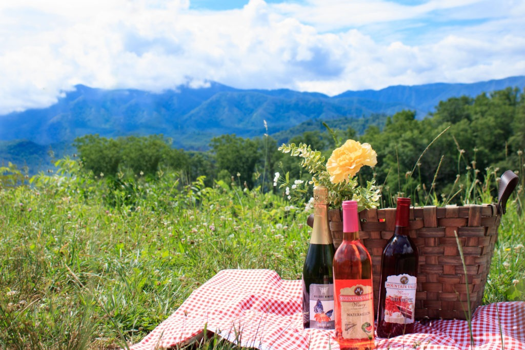 Bottles of wine in front of picnic basket with view of Smoky Mountains.