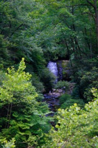 Waterfall in Great Smoky Mountain National Park.